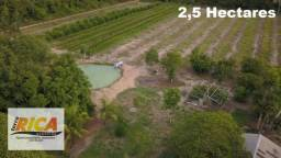 Título do anúncio: Chácara à venda, com 2,5 hectares na Área Rural de Candeias do Jamari/RO