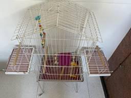 Gaiola para calopsita, periquito, pássaros de pequeno porte