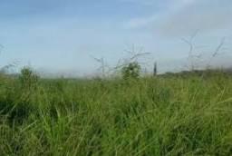 Fazenda de 2000 hectares Próximo do Rio Tapajós