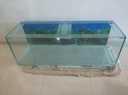 Aquario 192 litros + acessórios