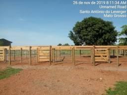 Fazenda Estrada de Santo Antonio. 25 km de Cuiaba