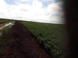 Fazenda 152 Alqueires Figueiropolis Tocantints 3 Pagamentos
