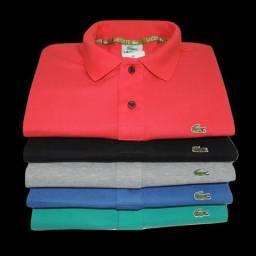 Kit 10 Camiseta de marca Gola Polo Cores Especiais Atacado 76ee4cbc7d54c