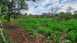 Título do anúncio: Fazenda 227,5 ha, 40km de Cuiabá