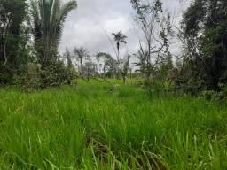 2 Lotes de terra 200 hectares tendo 18 de pastagem