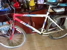 Bicicleta Caloi Aspen extra 21