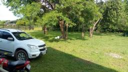 Fazenda 1450 hectare