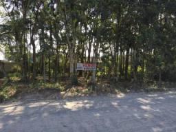Terreno para Venda em Joinville, Vila Nova