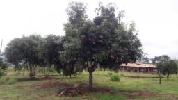 Chácara à venda em Itauna, Ibipora cod:13650.6503