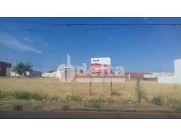 Terreno para alugar em Alto umuarama, Uberlandia cod:586377