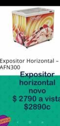 Expositor horizontal 300litros
