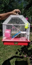 Linda Gaiola para hamster!!!