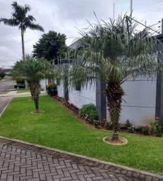 Jardineiro manutenção de jardins, podas de árvores reposição de gramas