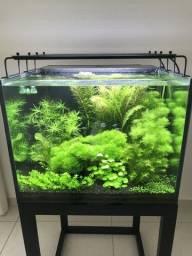 Luminária LED Nemo Light para Aquário Plantado