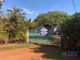 Chácara para alugar, 12000 m² por R$ 1.500/mês - Gleba Lindóia - Londrina/PR