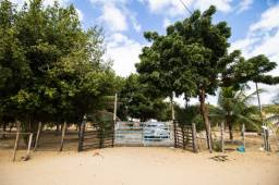 Chácara Zona Rural de Petrolina - PE
