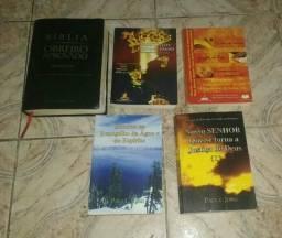 Vendo coleção bíblia grande com Harpa e 4 livros de estudos bíblicos novos