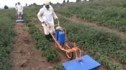 Carrinho Pulverizador com Aplicador de Herbicida