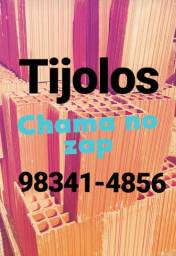 Tijolos 20x30=550,00