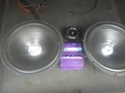 Vendo 2 street Bass Selenium 300 RMS cada