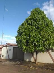 Ref:marista131-Ótima Casa terreá no setor Triunfo I , Goianira
