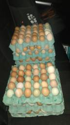 Título do anúncio: Ovos caipiras