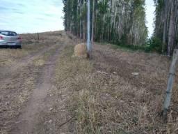 Título do anúncio: Terreno direto com o proprietário. (rp)