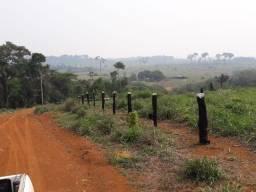 Vendo Fazenda Formada com 936 Hectares - Sentido Humaitá c/ Apuí
