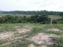 Terreno de 100 hectares, no km 99 da BR 163