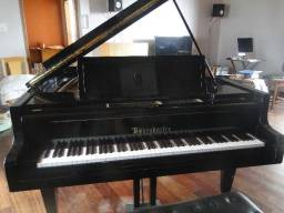 Piano de Cauda Bosendorfer M 170