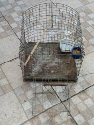 Vendo gaiola calopsita