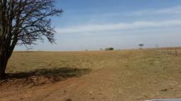 114 alqueires em Palestina-sp - 12 km usina guarani