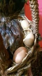 Cesta importada para a cozinha com ovos de cerâmica