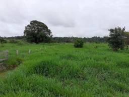 Propiedade rural no município de Machadinho D'Oeste Rondônia