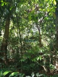 FAZENDA NO ACRE / AMAZONAS