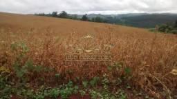 Chácara à venda em Zona rural, Pato branco cod:307