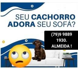 Título do anúncio: LAVAGEM A SECO.. LIVRE DE ÁCAROS E GERMES!