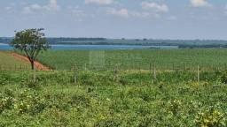 Fazenda para venda no município de Ilha Solteira-SP, com 165 alqueires em pastagem, podend