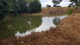 Fazenda 50 Alqueires Próximo a Cascavel Paraná