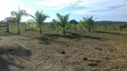 Vendo Sitio / Chácara 72 hectares, Pecuária ou lavoura, Casa, energia, Agua, Nobres