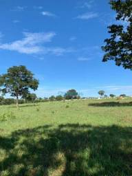 Fazenda Rondonópolis MT