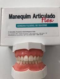 Manequim odontológico