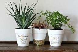 Vasos decorativos e para plantas