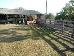 Fazenda para Pecuária Próximo da MT 010 Ha 80 km de Cuiabá