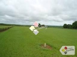Fazenda Rural à venda, Santo Antonio, Campos Novos - .