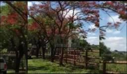 Chácara com 3 dormitórios à venda, 96800 m² por R$ 1.500.000,00 - Zona Rural - Rio Verde/G
