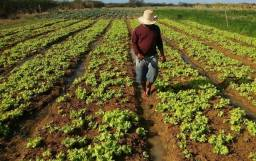 DA - Chácara, Sitio, Fazenda, Adquira a Sua Terra!!