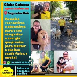 Passeadores de cães (Dogwalker)- Angra e Mangaratiba