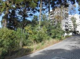 Terreno à venda em Borgo, Bento gonçalves cod:9923959