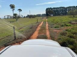 Título do anúncio: Fazenda na pecuária na beira do Rio próximo Rod. 198 alqueires região de Presidente Epitác